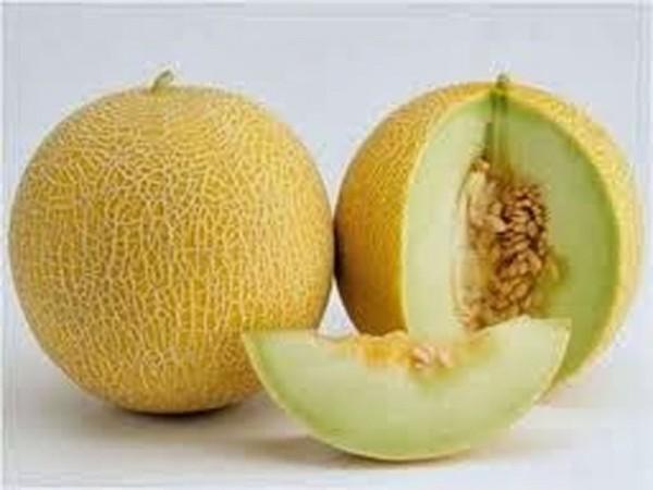 Manfaat Buah Melon Yang Tersembunyi untuk Kesehatan